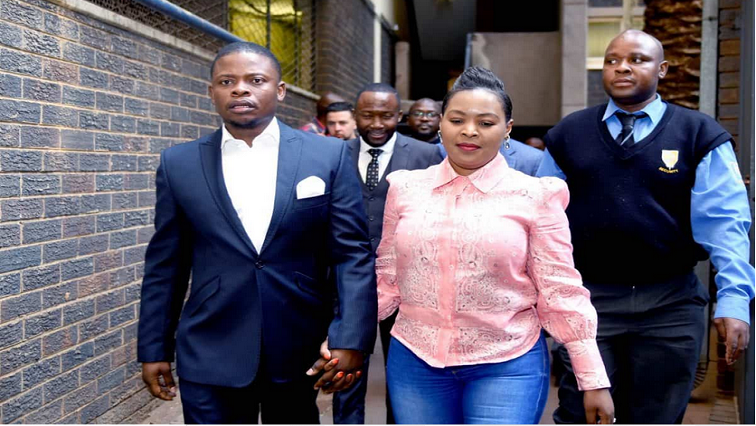 Government is to blame for the Bushiris' illegal stay in SA: Mashaba