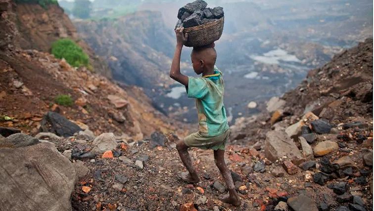 Child labour reported in Mbizana