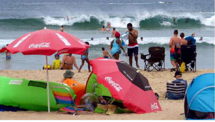 DA launches court bid to reopen Garden Route beaches